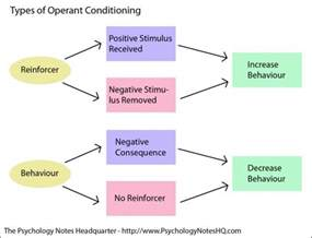 Everyday Examples of Operant Conditioning
