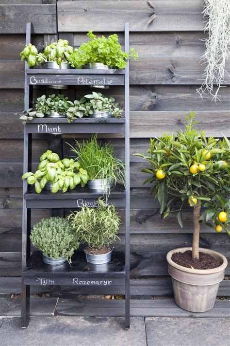 simple herb garden ideas for a balcony and model 77
