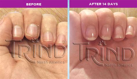 introducing featured member trind north america beauty