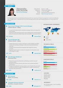 Key Account Manager Professional resume custom resume