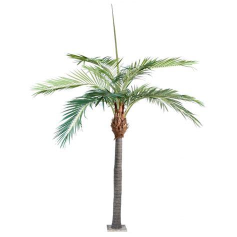 palmier exterieur pas cher palmier artificiel ext 233 rieur pas cher prix achat vente en ligne