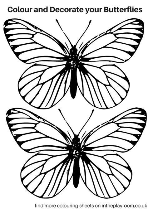 Coloring Butterfly by Free Printable Butterfly Colouring Pages In The Playroom