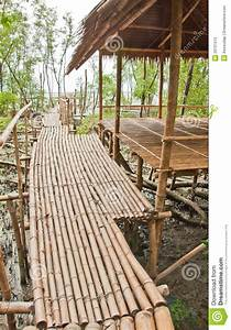 Couvert En Bambou : passage couvert en bambou avec l 39 abri dans la for t de pal tuvier photo libre de droits image ~ Teatrodelosmanantiales.com Idées de Décoration