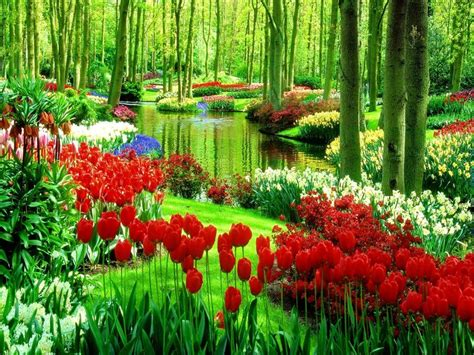 Free Garden Image by Green Park With Flowers Nature Hd Wallpaper Nature