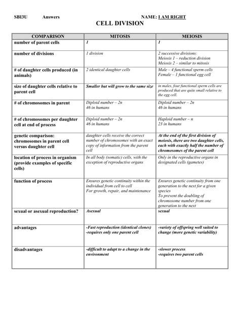 worksheet meiosis worksheet answer key grass fedjp