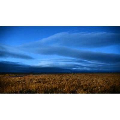 Three evenings in Samoylov Island Lena Delta Wildlife