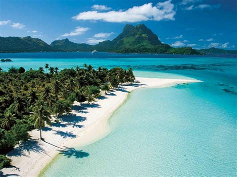 Beach In Tahiti, French Polynesia, Tropical Green Palm