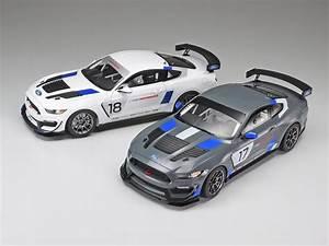 Tamiya Model Cars 1/24 Ford Mustang GT4 Race Car Kit – HobbyModels.com