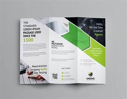 Fold Tri Brochure Corporate Arrow Template Graphic