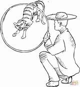 Tiger Coloring Pages Circus Jump Drawing Ready Supercoloring Silhouettes sketch template