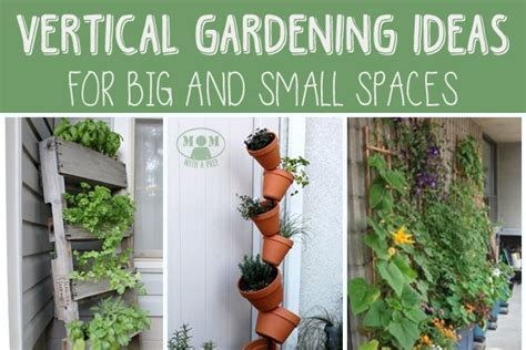 take out containers vertical gardening for big or small spaces with a prep