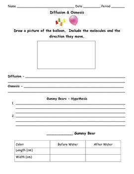 diffusion and osmosis worksheet by sweet d teachers pay teachers