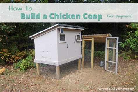 how do i make a chicken coop how to build a chicken coop for beginners purposefully simple