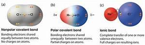 Molecule Polarity Phet Lab Worksheet Answers