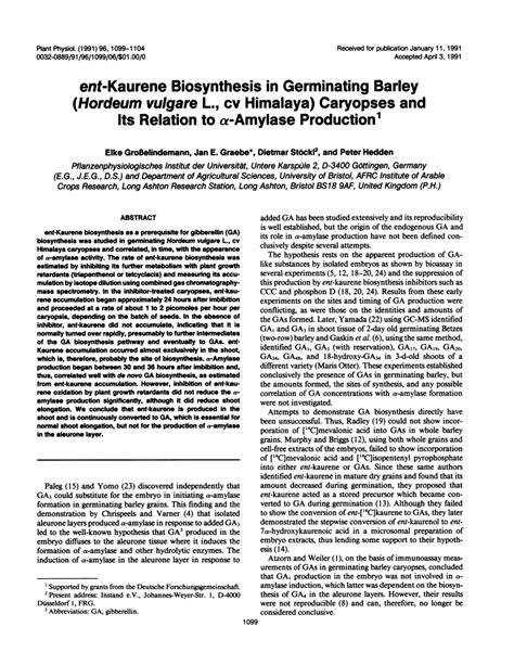 Entkaurene Biosynthesis In Germinating (pdf Download