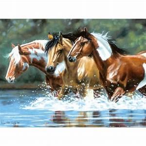 Bilder Von Pferden : pferde malen nach zahlen motive 14 99 ~ Frokenaadalensverden.com Haus und Dekorationen