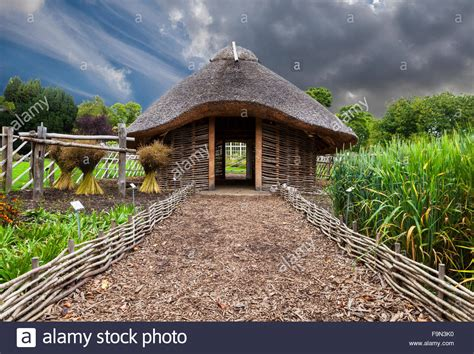 replica  century viking house   dublin national