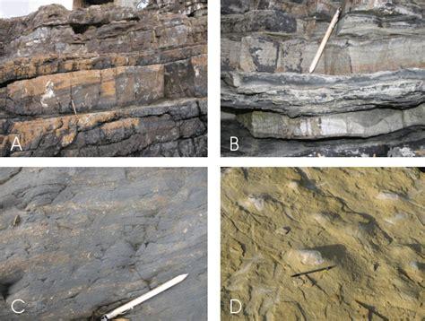 2807313272 sedimentologie facies et environnements sedimentologie
