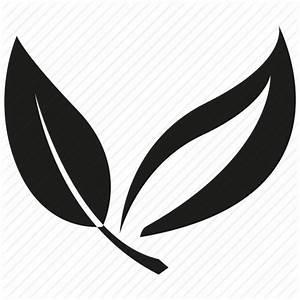 Leaf, tea leaf icon | Icon search engine