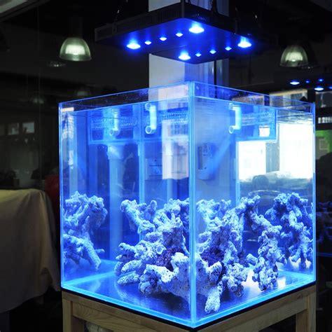 cheap reef tank lighting aliexpress com buy 169w cob lens aquarium led