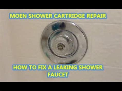 fix  leaking shower faucet moen cartridge