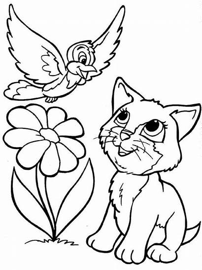 Coloring Cats Pages Animals Printable Cat Various