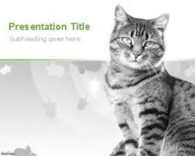 cats background  powerpoint