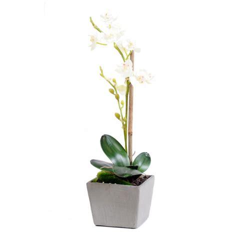 orchid 233 e phalaenopsis artificiel en pot d une hauteur de 37 cm blanc