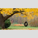 Nostalgic Wallpapers Backgrounds   1600 x 900 jpeg 308kB
