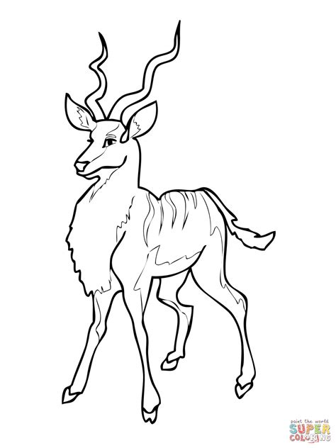 HD wallpapers african animals coloring pages for kids