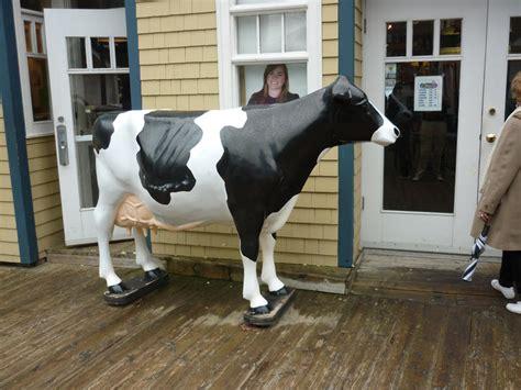 stock photo  large plastic model   dairy