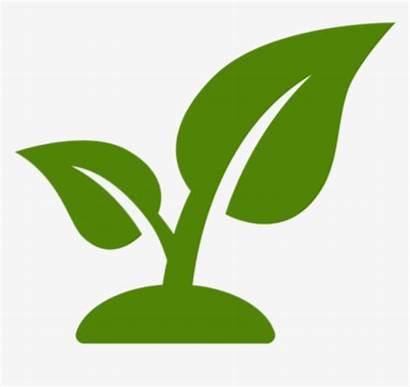 Plant Icon Landscaping Clipart Landscape Maintenance Pngkey