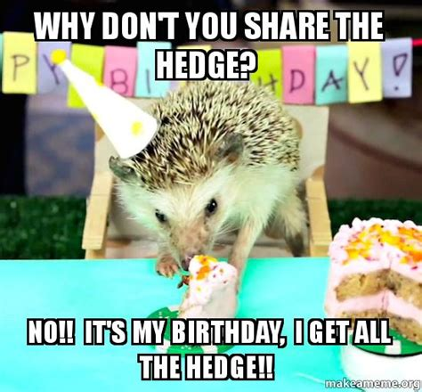 I Get It Meme - why don t you share the hedge no it s my birthday i get all the hedge make a meme
