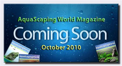 Aquascaping Magazine by Coming Soon Asw Magazine Aquascaping World Forum