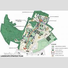 Brandeis University  Campus Master Planning Project