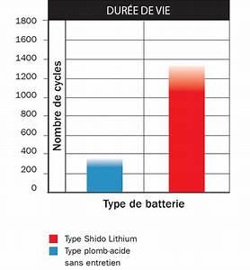 Durée De Vie D Un Moucheron : lebensdauer lithium batterie lade und entladezyklen ~ Farleysfitness.com Idées de Décoration