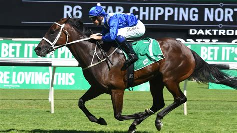 winx racehorse profile stats form guide news results
