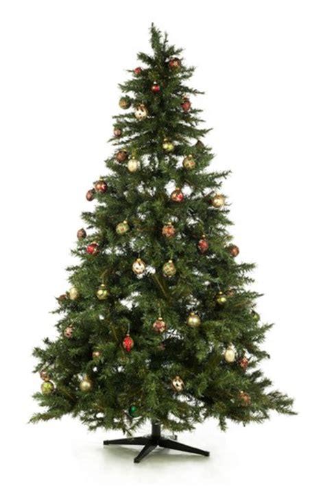ellen degeneres christmas trees hotel germs tree s