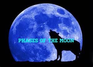 Moon Phases On Flowvella