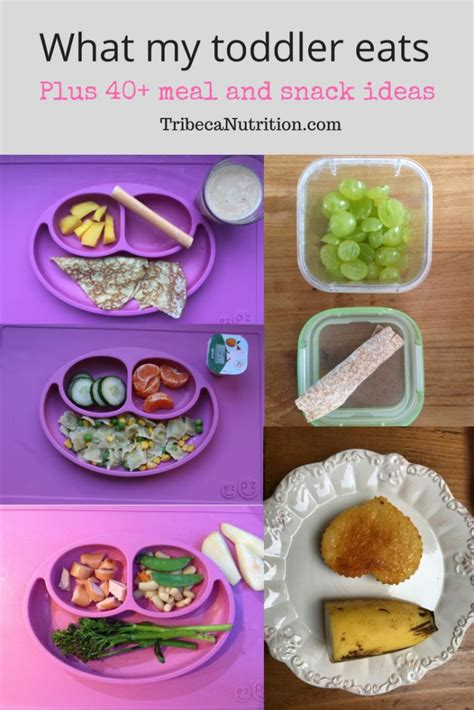 preschool lunch ideas for picky eaters 1000 images about great ideas for on 440
