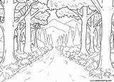 Coloring Jungle River Printable Adults sketch template