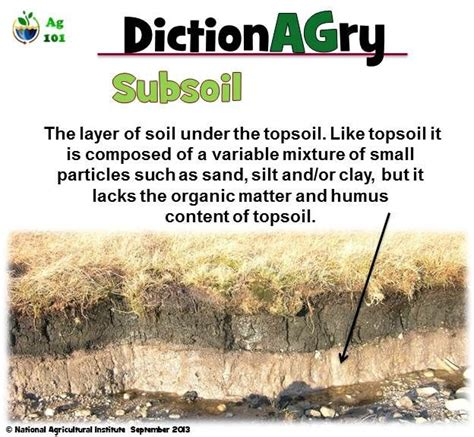 meaning of activities of gardening definition of subsoil agriculture ag science science education plant science