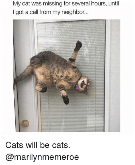 Lost Cat Meme - my cat was missing for several hours until got a call from