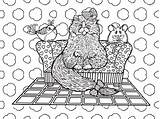 Coloring Books Drawings Rugs Uploaded sketch template