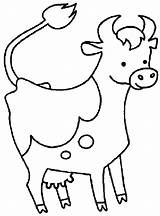Cow Coloring Pages Cartoon Printable sketch template