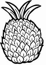 Pineapple Coloring Printable sketch template