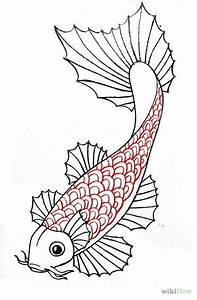 Draw a Koi Fish | Koi, Fish and Drawings