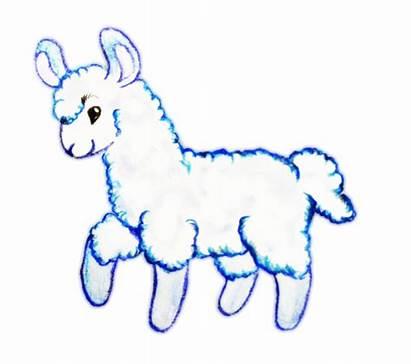 Llama Alpaca Clipart Outline Cartoon Clip Butt