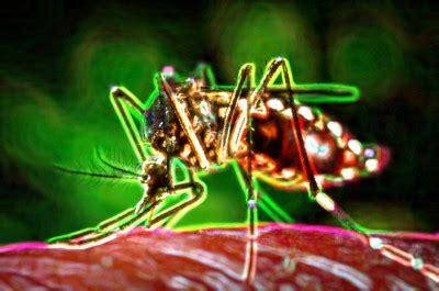 La conspiración detrás del virus Zika   Blogs El Tiempo