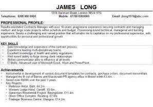 Professional Examples Of Cv